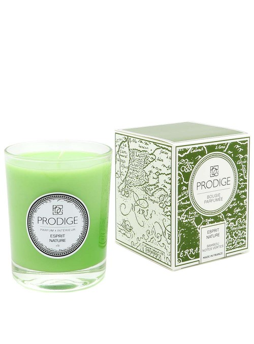 Scented Candle PANGAEA (Bamboo, Green notes)