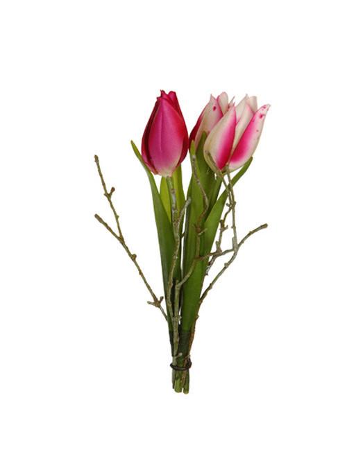 Piquet de tulipes beauty