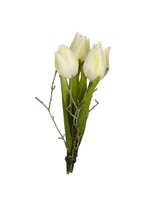 Piquet de tulipes crème