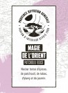 Reed Diffuser MAGIC OF FAR EAST (Woody, Patchouli) 100ml